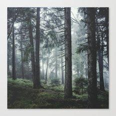 Path Vibes Canvas Print