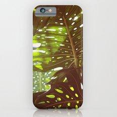 Let Light In Slim Case iPhone 6s