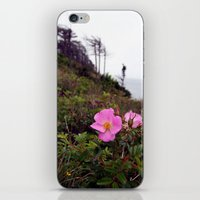 Pink Wild Rose, Gravels … iPhone & iPod Skin
