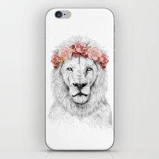 Festival lion iPhone & iPod Skin