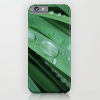 water on grass iPhone 6 Slim Case