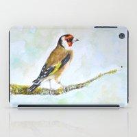 European goldfinch on tree branch iPad Case