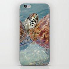 TurtleyTwins iPhone & iPod Skin