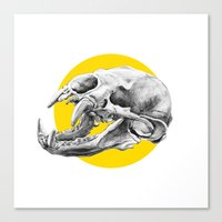 Canvas Print featuring Bear Skull by HanYong