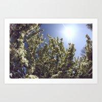 Green Breeze Art Print