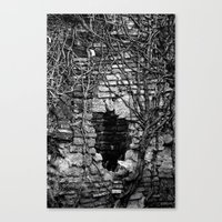 Heart of darkness Canvas Print