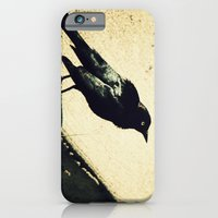 iPhone & iPod Case featuring Little Blackbird by Randy Aquilizan