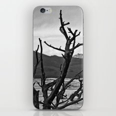 yellowstone iPhone & iPod Skin