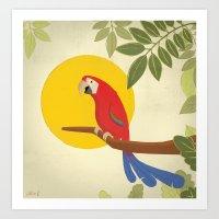 Macaw Art Print