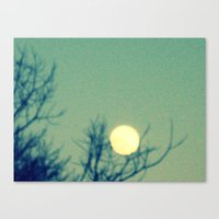 Tree holding the moon Canvas Print