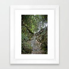 Nature 21 Framed Art Print