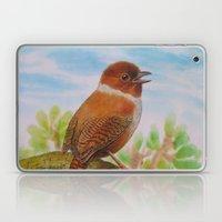 A Brown Bird Laptop & iPad Skin