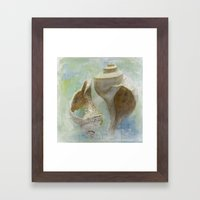 Channeled Whelks Framed Art Print