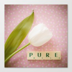 Pure - White Tulip Canvas Print