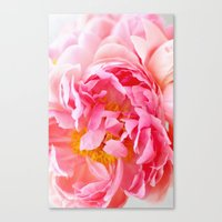 Peonies Forever II Canvas Print