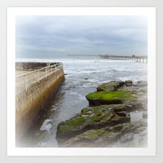 When the tide goes out, a briny soup is trapped among the rocks Art Print