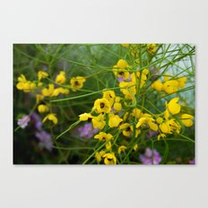 desert flowers Canvas Print