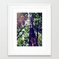 Skyward Framed Art Print
