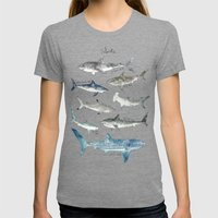 Sharks Womens Fitted Tee Tri-Grey SMALL