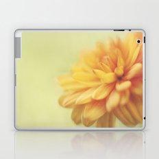 Dreamsicle Laptop & iPad Skin