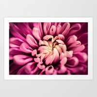Grasping Pink Art Print