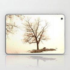 Winter Laptop & iPad Skin