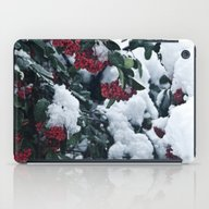 Winter And Snow iPad Case