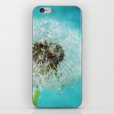 dandelion-one iPhone & iPod Skin