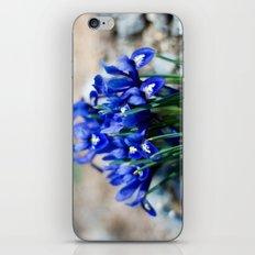 Iris Watercolor iPhone & iPod Skin