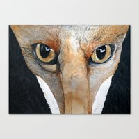 Fox Eyes Canvas Print