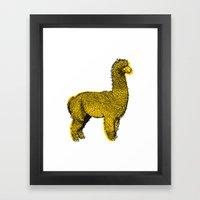 huacaya alpaca Framed Art Print