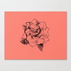 Rose on Rose Canvas Print