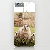 iPhone & iPod Case featuring Family by Melissa Murphy