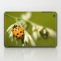 Ladybug iPad Case