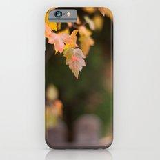 Autumn Orange iPhone 6 Slim Case