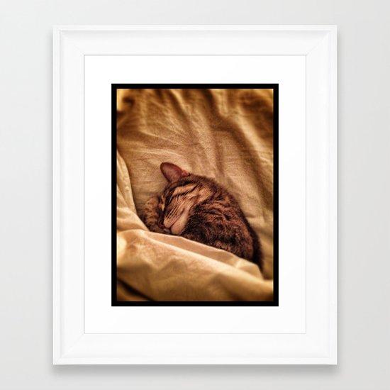 Felix  Framed Art Print