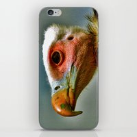 Ethel The Vulture iPhone & iPod Skin