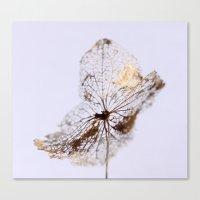 Delicate  - JUSTART © Canvas Print