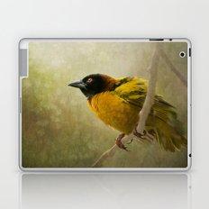 Weaver Bird Laptop & iPad Skin