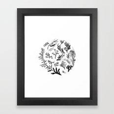 Sea Life no.2 Framed Art Print