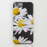 iPhone & iPod Case featuring Daisies #1 by Emma Conner
