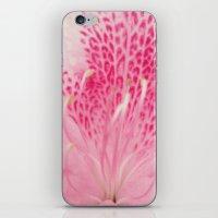 Pink Azalea iPhone & iPod Skin