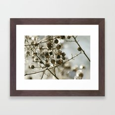 Winter's Silver Jewel Framed Art Print