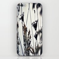 Am I A Weed? iPhone & iPod Skin