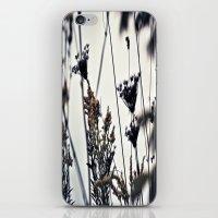 Am I A Weed? iPhone & iPod Skin