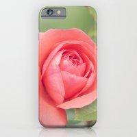 Summer Rose iPhone 6 Slim Case