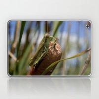 Grasshopper  2 Laptop & iPad Skin