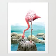 fenicotteri rosa Art Print