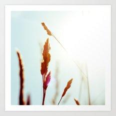 Nature Blue Reeds Art Print