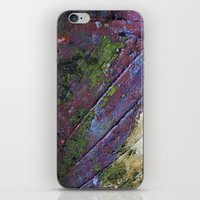 The painted Rainbow iPhone & iPod Skin